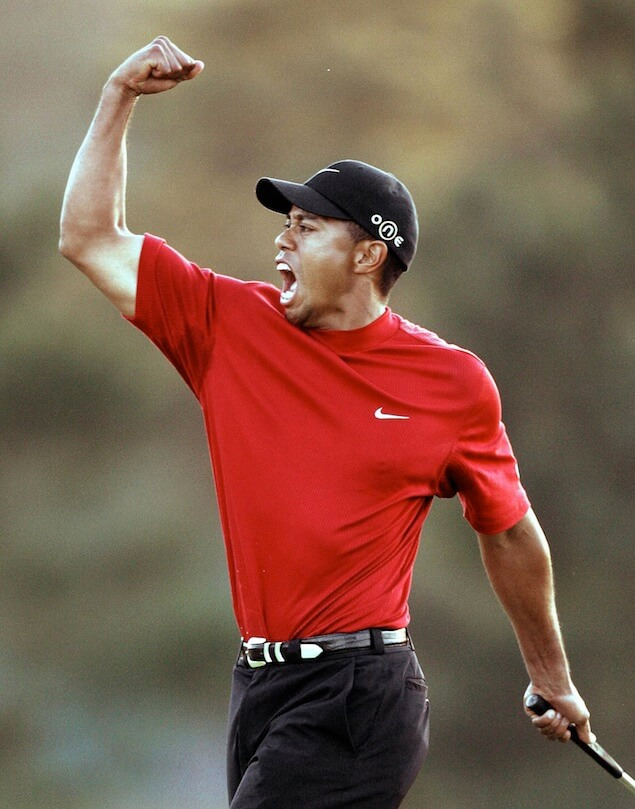 Freeing Tiger: Breaking Down Tiger's DWI/DUI Arrest: Part 2 – Intoxication